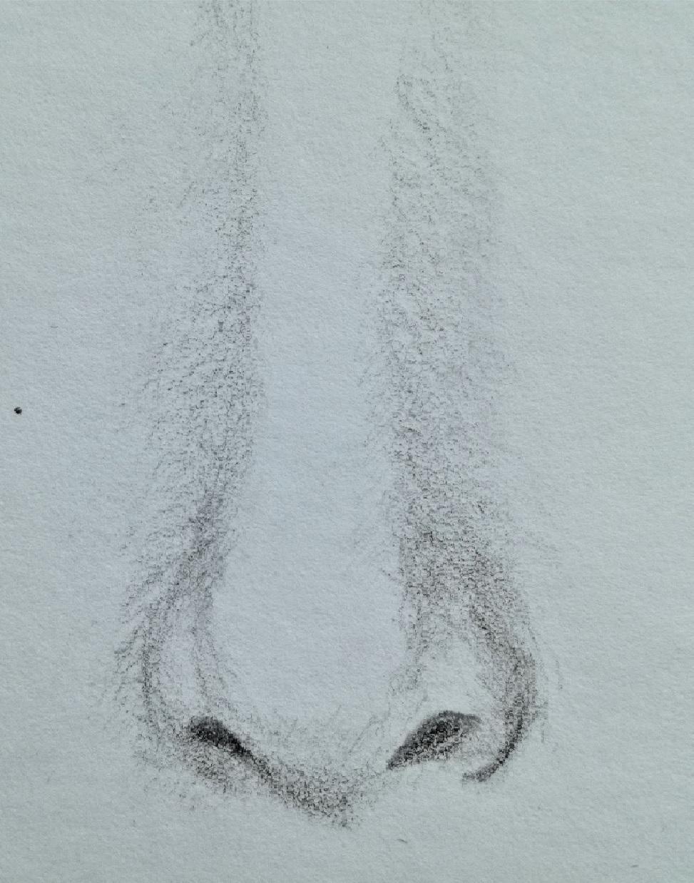 Kresba Realistickeho Nosu V 5 Krocich