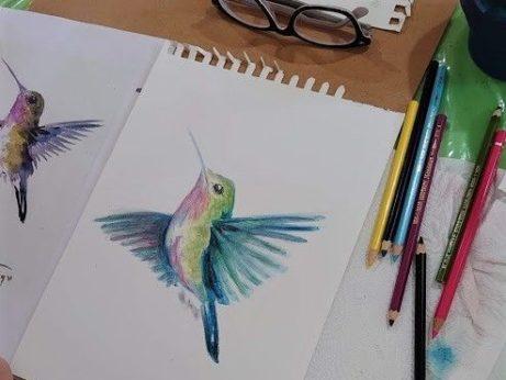 Jak kreslit akvarelovými pastelkami